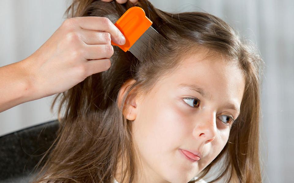 Un salon de coiffure sp cialis dans les poux biblond for Salon de coiffure anti poux