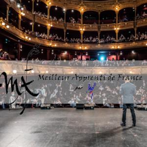 Cérémonie de remise des récompenses aux lauréats du concours Un des Meilleurs Apprentis de France
